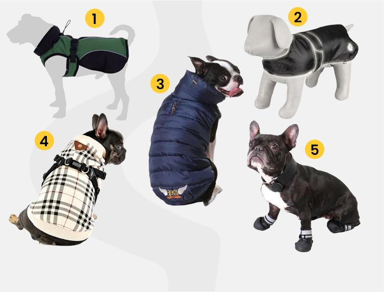 b13d4ffb8a Milyen kutyaruhát válasszunk kedvencünknek? | Startlap